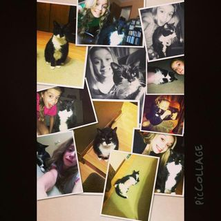 Bubbie Collage